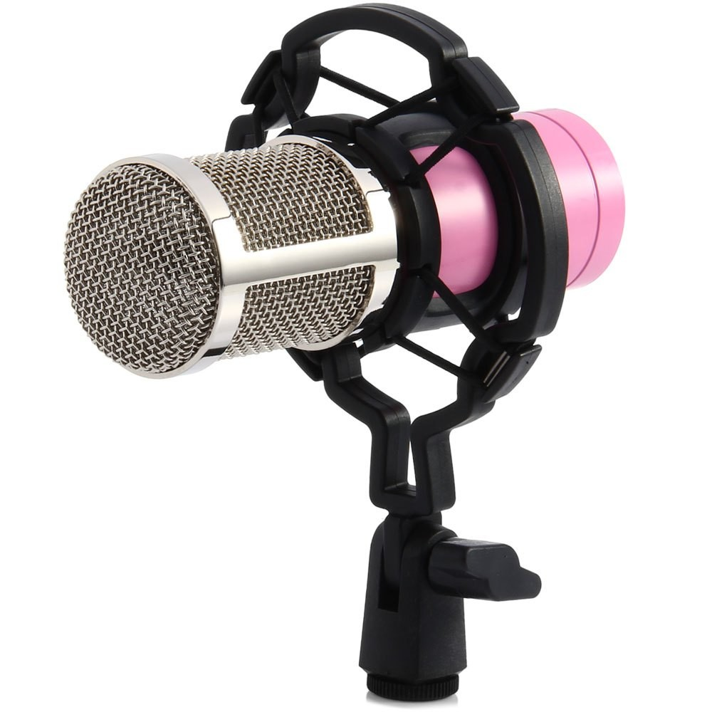 broadcasting BM800 microphone
