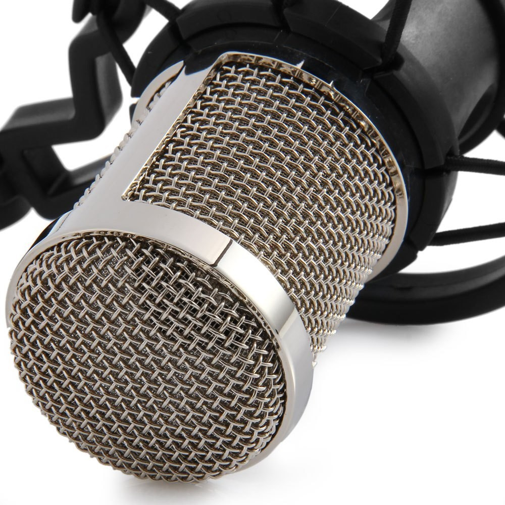 audio recording BM800 microphone